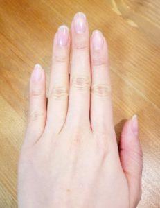 ハンドモデル例、左手