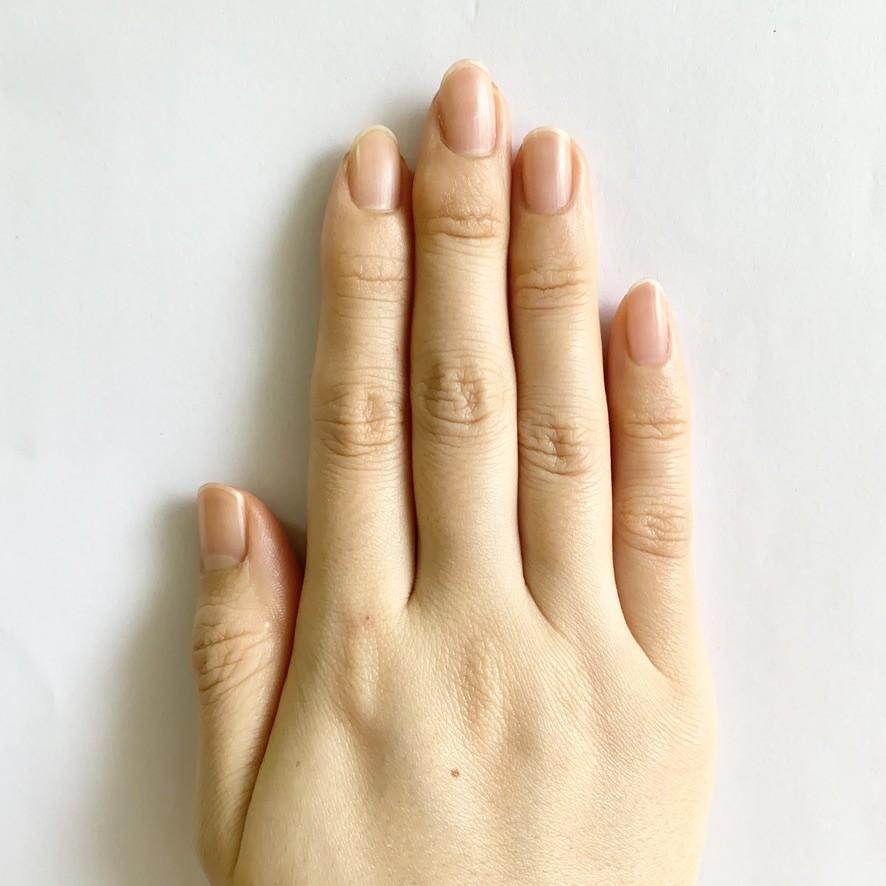 右手正面(素爪)