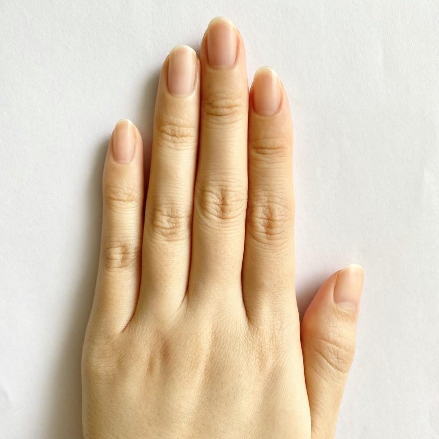 左手正面(素爪)